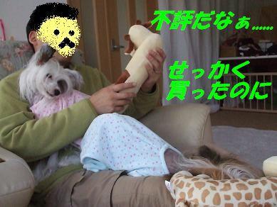 f0179203_835957.jpg