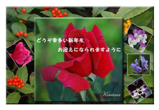 c0051105_14185366.jpg