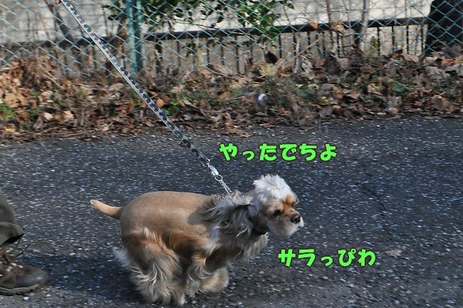 b0067012_2221142.jpg
