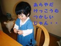 c0118715_17465279.jpg