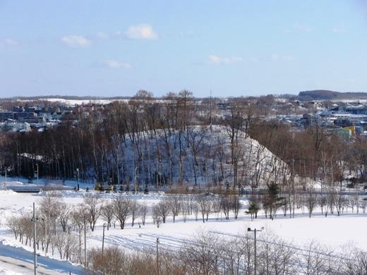 2010年12月29日(水):2010年もあと3日!_e0062415_1730478.jpg