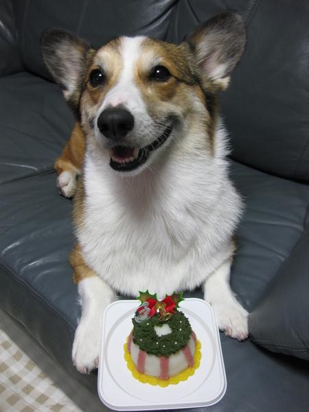 クリスマスに間に合った~♪_f0155118_6424561.jpg
