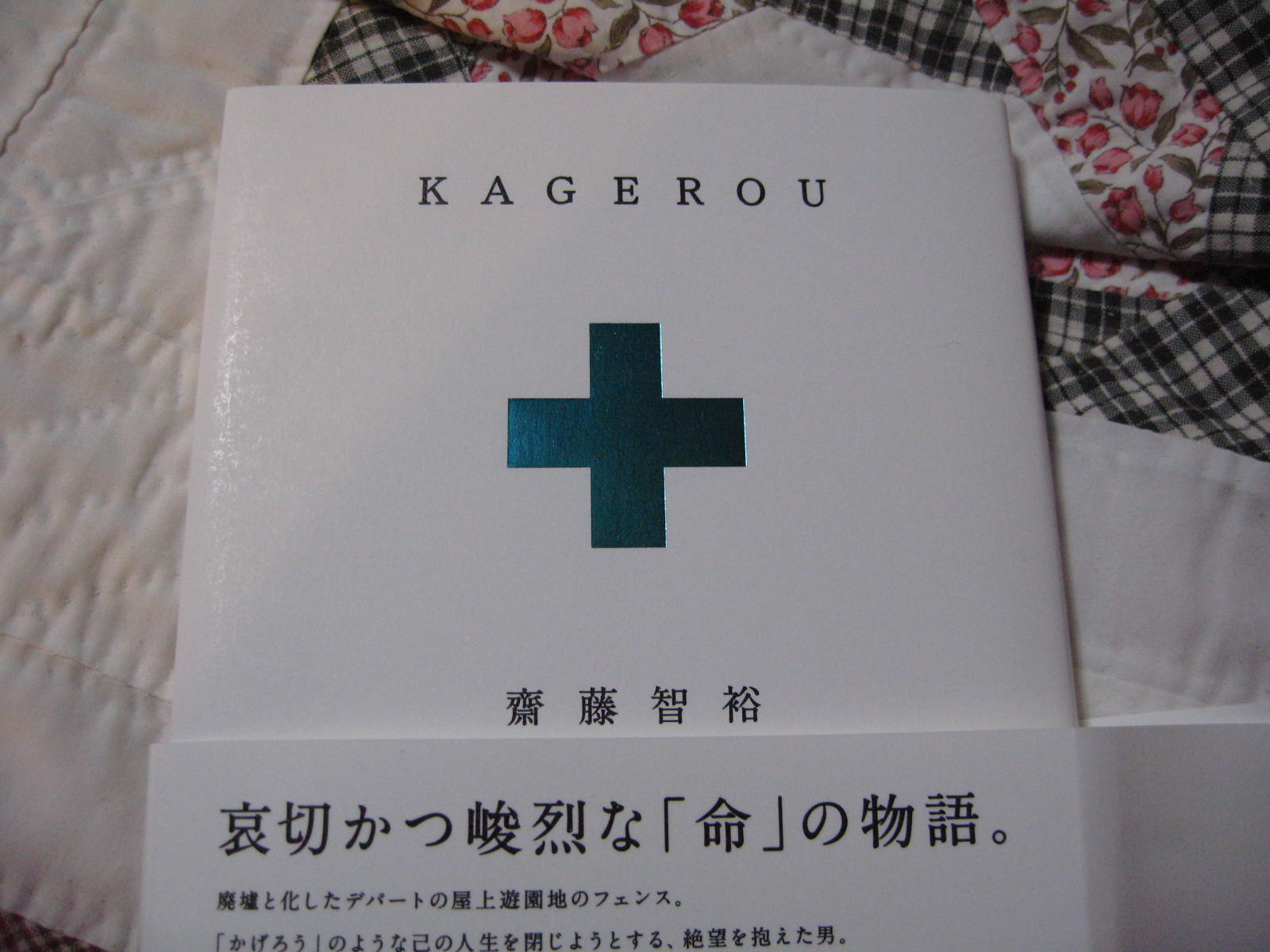 kagerou  かげろう_f0146620_21411541.jpg