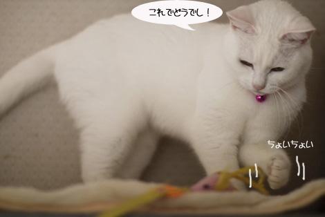おもちゃ、静かに遊ぶ編_e0151545_22215953.jpg