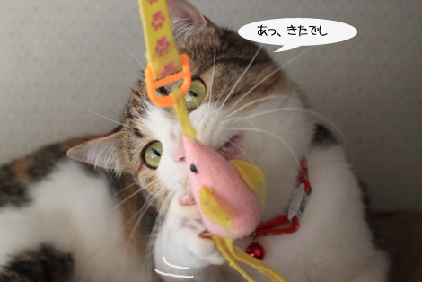 おもちゃ、静かに遊ぶ編_e0151545_22221785.jpg