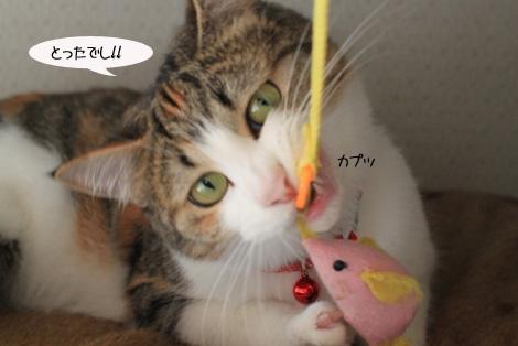 おもちゃ、静かに遊ぶ編_e0151545_22223961.jpg