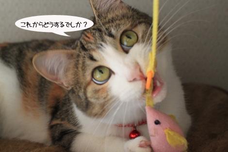 おもちゃ、静かに遊ぶ編_e0151545_22225348.jpg