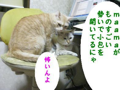 b0151748_19595076.jpg