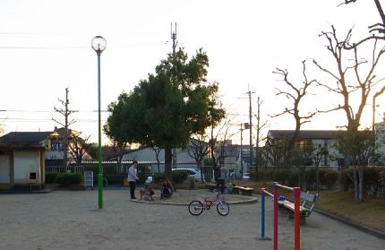 玉岡児童公園ものがたり後編・やがて芝生が青くなり祝祭が ー「公園のおじさん」岩根さんの軌跡_c0069903_8342127.jpg