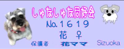 c0219815_19334560.jpg