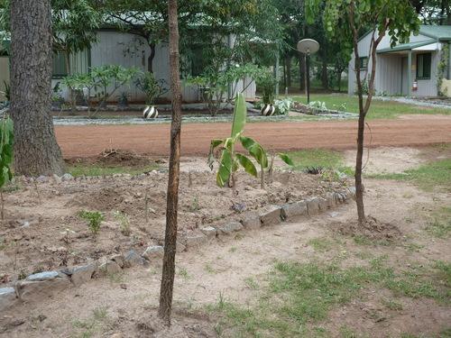 b0208620_200991.jpg