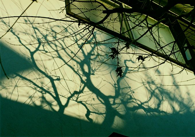 light and shadow_b0170947_158481.jpg