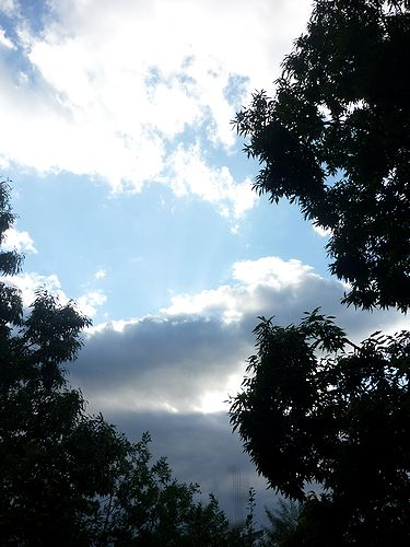 大晦  おおつごもり     良いお年を  奈良の旅から☆*:.。.☆*† _a0053662_13283732.jpg