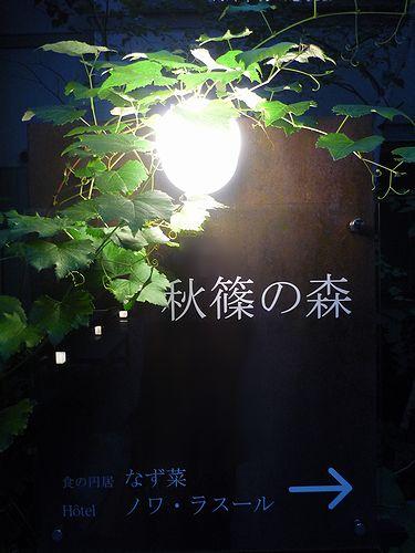 奈良 秋篠の森 ☆  Hotel ノワ ラスール 。.。.☆*†♪ _a0053662_2172325.jpg