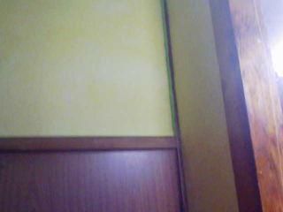 c0060272_164540.jpg
