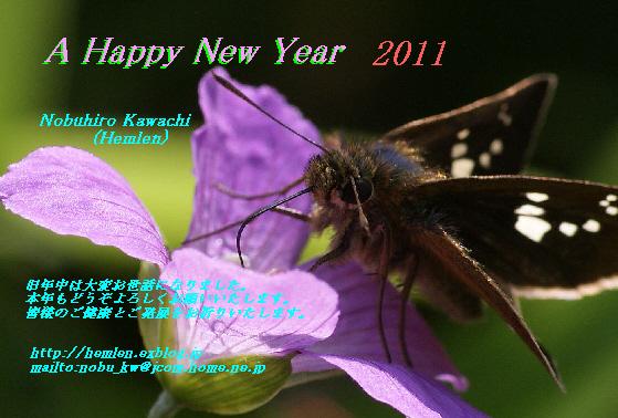 b0078795_20113358.jpg