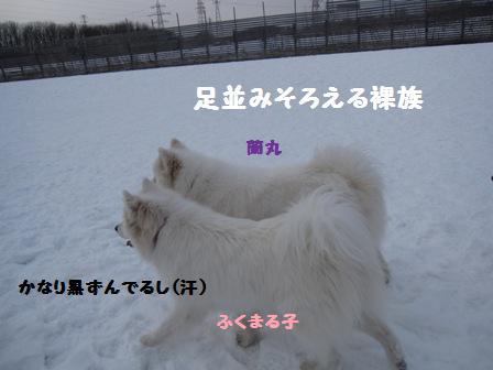 f0212597_10344977.jpg