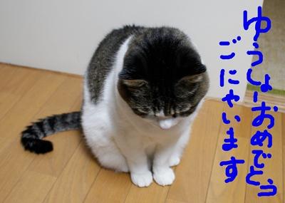 a0039600_1064922.jpg