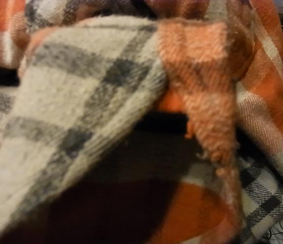 1月2日入荷商品!winter king ,plgrim などヘビーネルシャツ!_c0144020_1082662.jpg