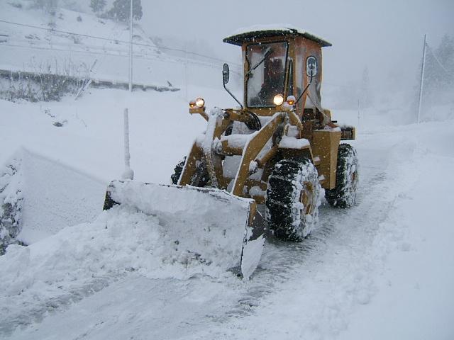 大雪と「いずも八山椒のこの一年」_c0220321_9391491.jpg