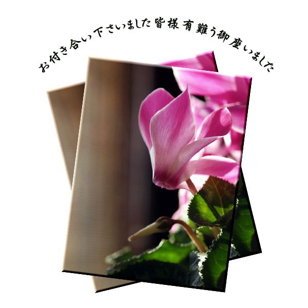 f0103534_22484081.jpg