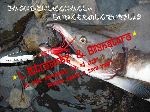 b0180946_16573226.jpg