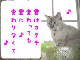 b0151748_1012039.jpg