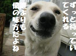 b0151748_10142566.jpg