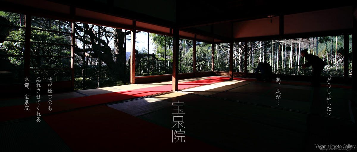 京都、日帰り写真撮影逃避行 ~京都大原、宝泉院~_b0157849_11491917.jpg