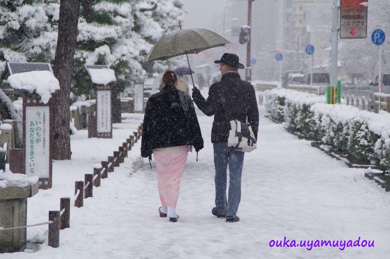 冬の京都・雪の大晦日_a0157263_21542712.jpg