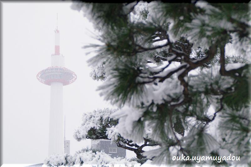 冬の京都・雪の大晦日_a0157263_22339.jpg
