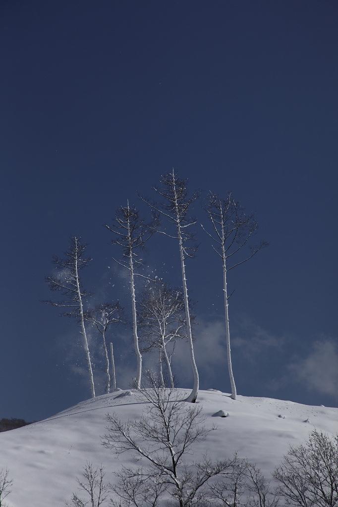 山に暮らせば_e0091879_027362.jpg