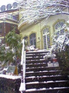 大雪ですが、_c0052692_14531643.jpg