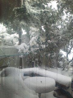 大晦日 外は凄い雪_c0100195_14364365.jpg