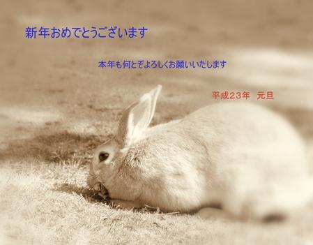 f0175003_1184923.jpg