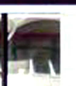 e0103408_1204310.jpg