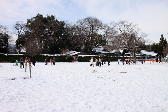 初詣 上賀茂神社_e0048413_20534962.jpg