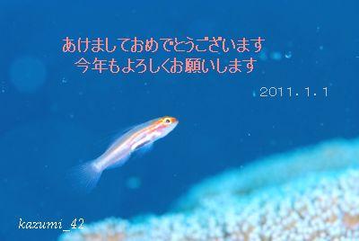 b0164920_16355478.jpg