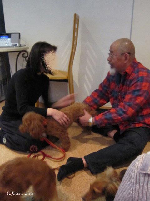 愛犬の為の整体教室のお知らせ&レポート_c0099133_18453627.jpg
