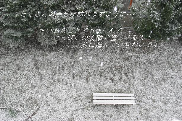 f0048339_16603.jpg