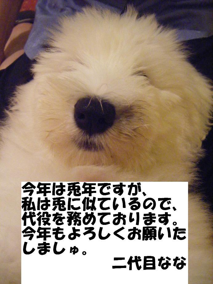 c0210546_1635112.jpg