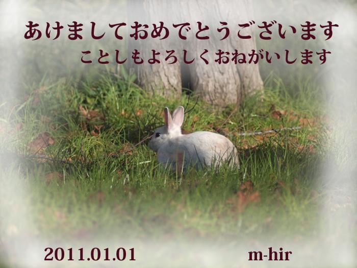 b0021375_0371381.jpg