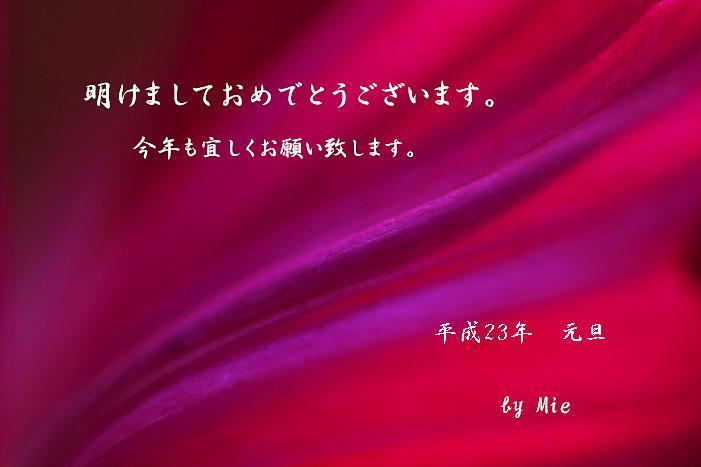 c0121276_1139325.jpg