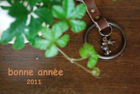 bonne année 2011_b0098081_214355.jpg