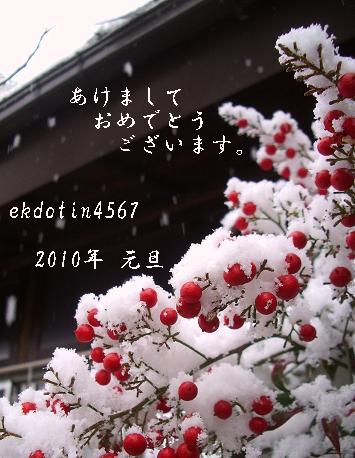 c0158882_0252462.jpg