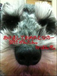 a0181388_1565243.jpg