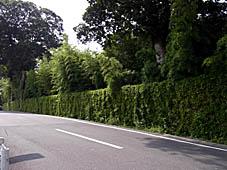 「京都の文化」 へえ~!って感動する塀_c0186689_2048472.jpg