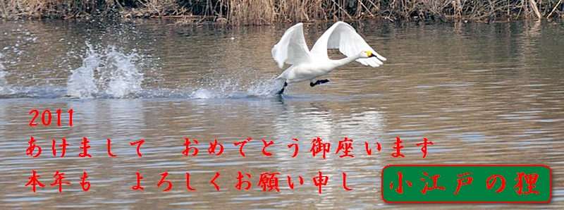 f0168596_11301518.jpg