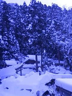 Wall Of Snow,Wall Of Sound 2011_b0125413_14561295.jpg