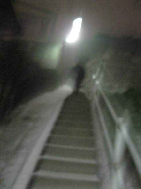 「大晦日」の巻~~~_a0125419_9571217.jpg
